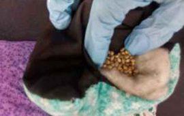encuentran-semillas-de-mariguana-en-cojines-de-tela