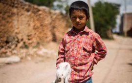 mitad-de-ninos-mexicanos-viven-en-pobreza-unicef